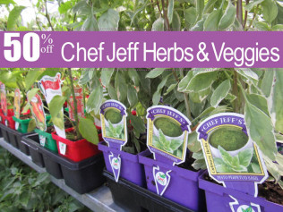 Chef Jeff Herbs & Veggies: 50% off