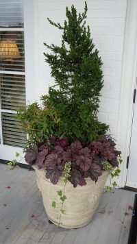 November 2010 Container and Annual Color 067