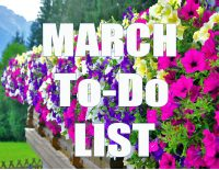 MarchTo Do List