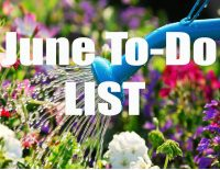 June To Do List