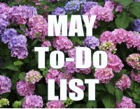 May To Do List